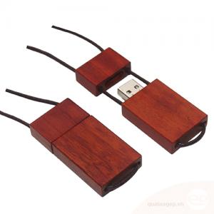 USB gỗ 009